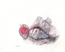 cocoon - kerstin müller