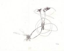 icarus – Kerstin Müller Künstlerin
