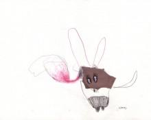 harvey – Zeichnung Kerstin Müller