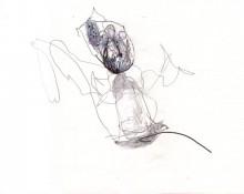 tempress– Kerstin Müller Zeichnung