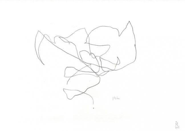 heho  — Künstlerin Kerstin Mer
